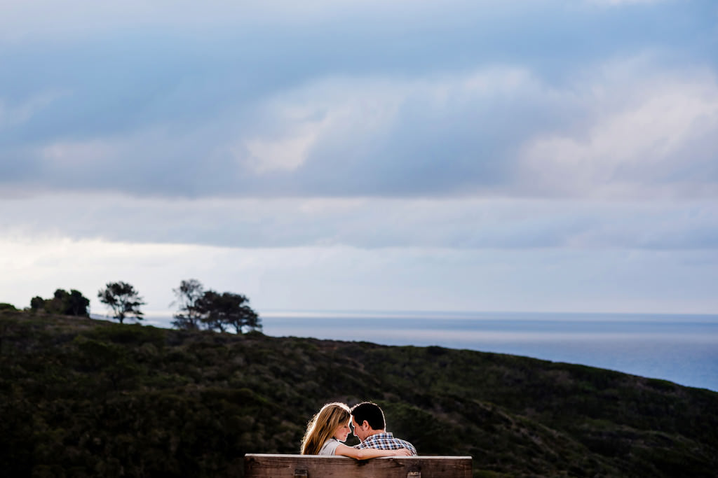 Torrey Pines State Reserve Engagement Photography